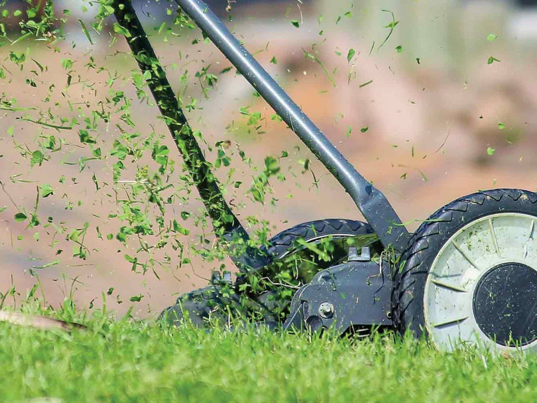 Keep Your Lawn in Great Condition Year-Round
